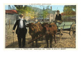 Old Timer and Ox Cart, Nashville, Indiana Posters