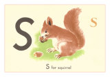 S is for Squirrel Prints
