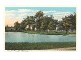 Highland Park, Mt. Vernon, Illinois Posters