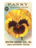 Pansy Seed Packet Poster