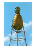 Pineapple Water Tower, Hawaii Posters