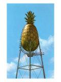 Pineapple Water Tower, Hawaii Posters