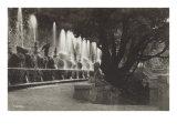 Trevi Fountain, Rome, Italy Prints