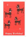Happy Birthday, Four Poodles on Leashes Poster