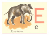 E is for Elephant Poster