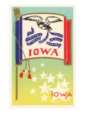 Flag of Iowa Prints