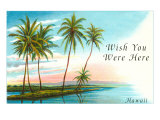 Wish You Were Here, Hawaii, Palm Atoll Art
