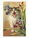 Iris Eloquence with Kitten Art Print