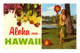 Aloha from Hawaii Prints