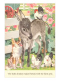 Baby Donkey with Farm Animals Prints