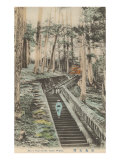 Stone Steps to Nikko Tomb Posters