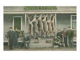 Dead Deer Hanging at Kineo Store Kunstdrucke
