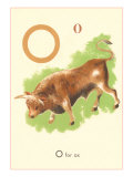 O is for Ox Print