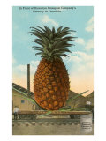 Giant Pineapple on Flatbed, Honolulu, Hawaii Prints