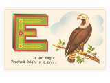 E is an Eagle Poster