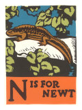 N is for Newt Prints