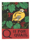 Q is for Quail Giclee Print