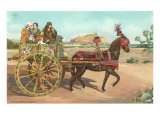 Sicilian Cart, Palermo, Italy Print