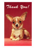 Thank You, Chihuahua Posters
