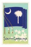 South Carolina Flag Art Print