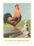 Rooster Crows and Dog Barks Poster