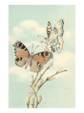 Butterfly People on Pussy Willows Prints