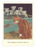Puppies Watch Big Cat Prints