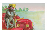 Teddy Bear Driving Fire Engine Posters