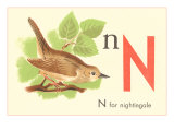 N is for Nightingale Posters