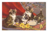 Four Kittens with Saucer and Daisies Poster