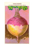 French Rutabaga Seed Packet Prints