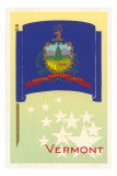 Vermont Flag Art Print