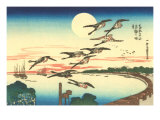 Japanese Illustration, Flying Geese Affiches