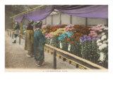 Geishas Eying Chrysanthemums Prints