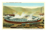Roundhouse, Pocatello, Idaho Prints