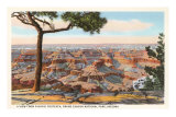 Yavapai, Grand Canyon Posters