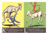 Kangaroo and Lamb Posters