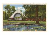 Kapiolani Park, Honolulu, Hawaii Prints