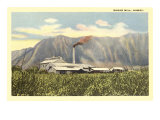Sugar Mill, Hawaii Prints