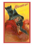 Halloween, Startled Witch and Cat Poster