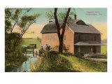 Sager's Mill, Valparaiso, Indiana Print