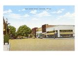 West Market Street, Nappanee, Indiana Prints