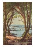 Pandanus Forest on Shore, Hawaii Prints