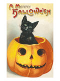 A Merry Halloween, Cat in Jack O'Lantern Poster