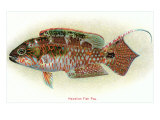 Hawaiian Fish, Pou Poster