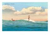 Surf Riding, Waikiki, Hawaii Plakát