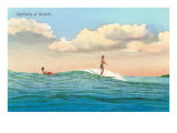 Surf Riding, Waikiki, Hawaii Posters