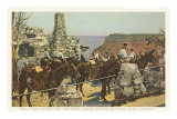 Mules at Lookout, Grand Canyon Posters