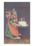 Dressed Kitten with Birthday Cake Prints