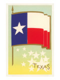 Flag of Texas Premium Giclee Print